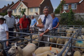 Hailsham Livestock Market