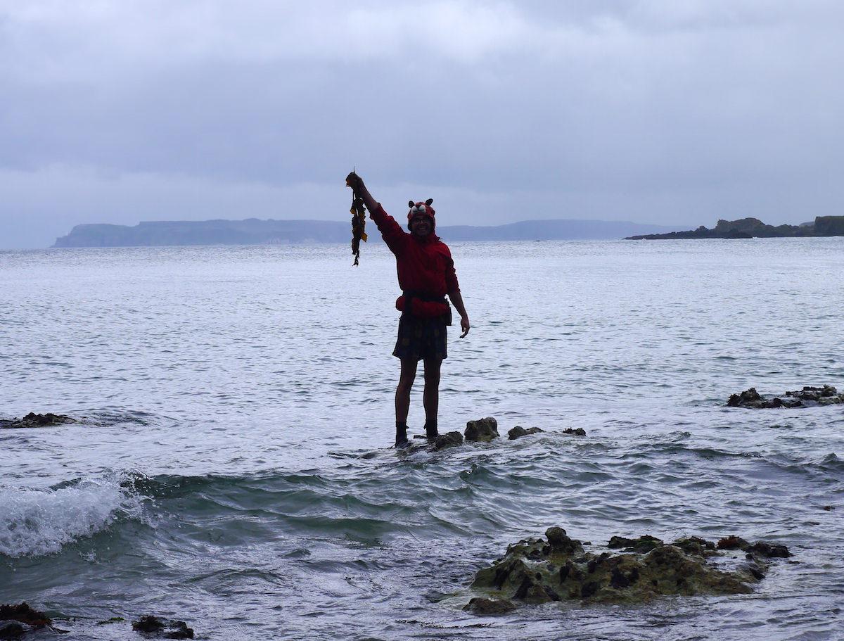 seaweed harvesting course broughgammon north coast seaweed course k