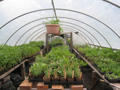 Propogation Greenhouse