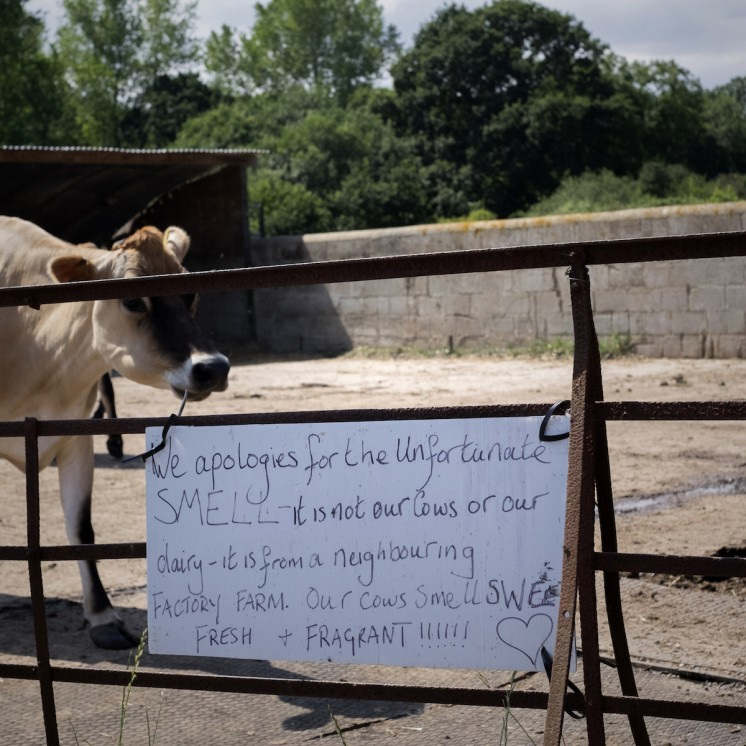Welcome sign at Calf At Foot Dairy