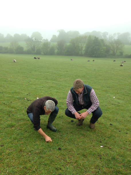 Dave and Mike examining the grassland