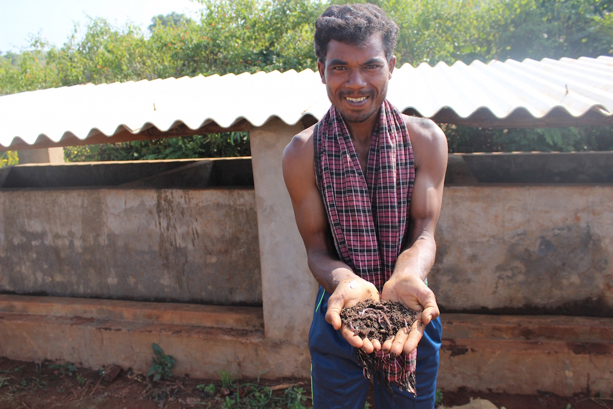 Buda Majhi showing vermi in front of his vermi-compost shed