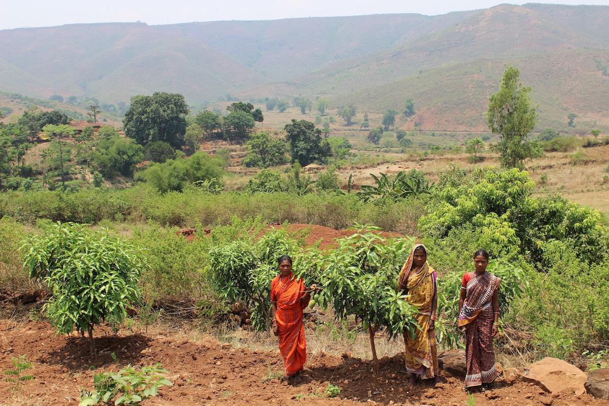 Members of Maligaon Mahila Mandal standing on their commons land