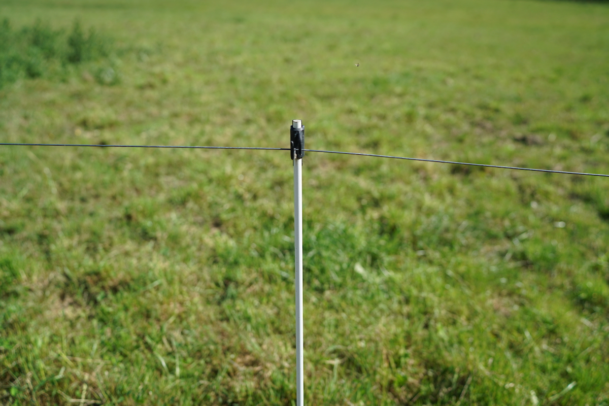 Carbon fibre electric fence posts