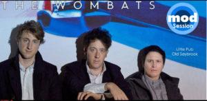 wombats at little pub