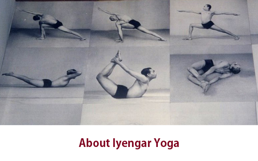 what is iyengar?