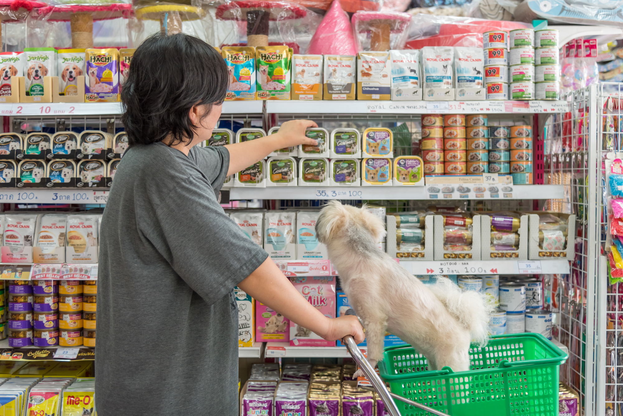 How to Design the Perfect Label for Your Pet Care Products