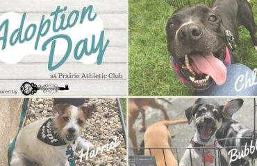 Pet-Adoption-Day-Key-To-Happiness-Resuce-PAC