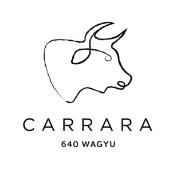 CARRARA_DESC_MONO