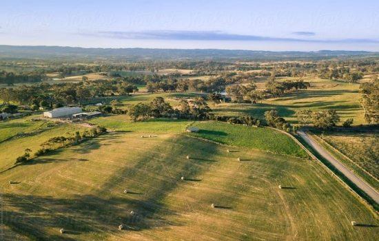 Irrigated farm land