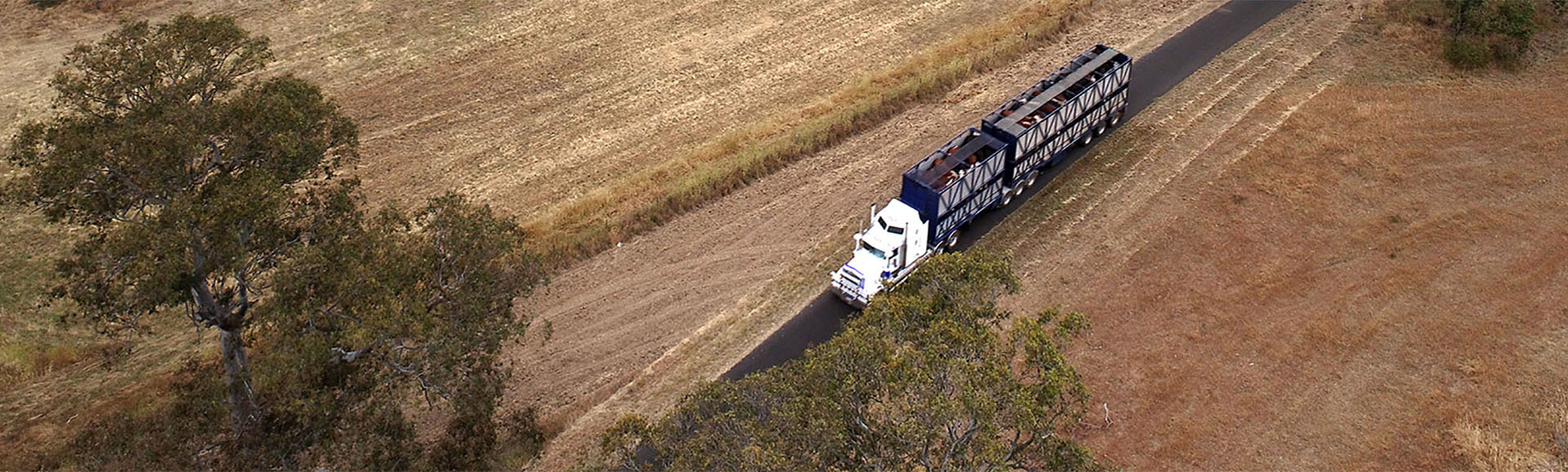Cattle truck driving through Australian outback