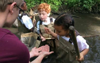 Camp Curious Summer Camps Registration Now Open at the Grand Rapids Public Museum