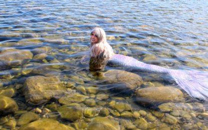 Live Mermaid in Dragons, Unicorns & Mermaids Exhibit at the Grand Rapids Public Museum