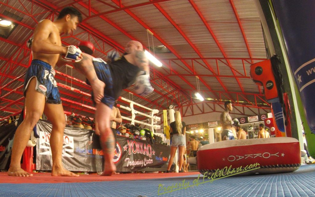 8 1024x641 - YOKKAO Skullz Muay Thai Boxing Gloves 10oz.