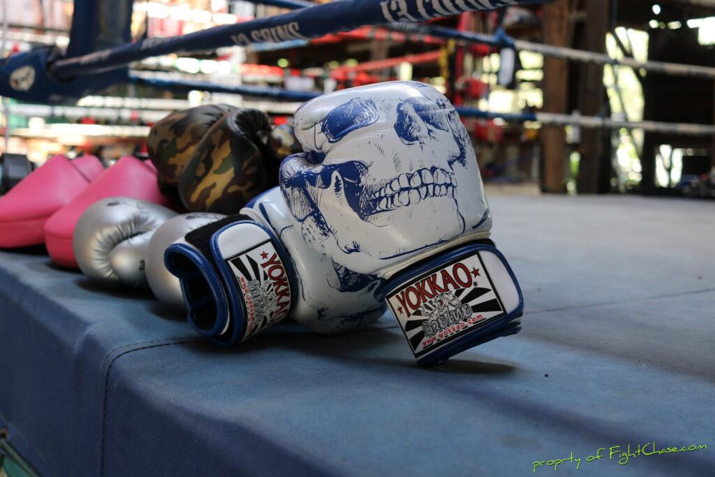 2313 coins 36 1024x683 - YOKKAO Skullz Muay Thai Boxing Gloves 10oz.