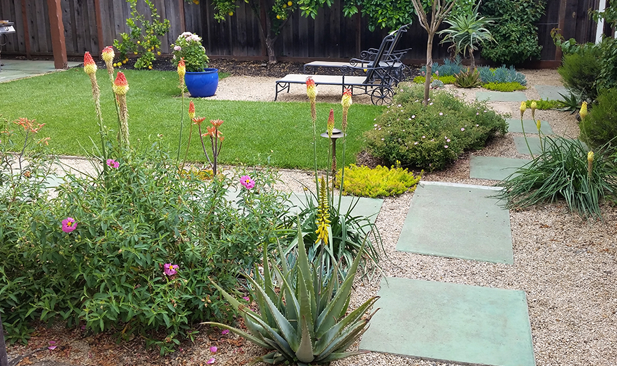 Recycled earth-colored concrete slabs in a backyard with beautiful flowering plants, succulents, and a small lawn