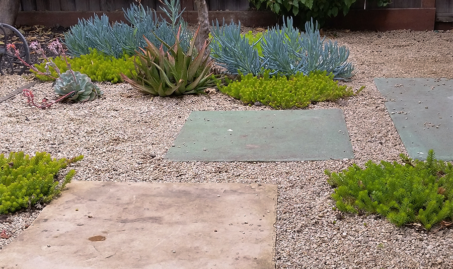 Pastel colored concrete slabs among the plants in garden