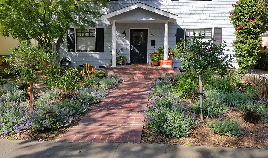 Plants in the front yard along entrance path to front door of two-story white house