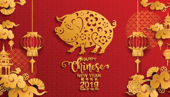 Chinese Year of the Pig