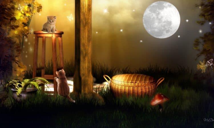 August 15, 2019 Full Moon - Sturgeon Moon - Green Corn Moon