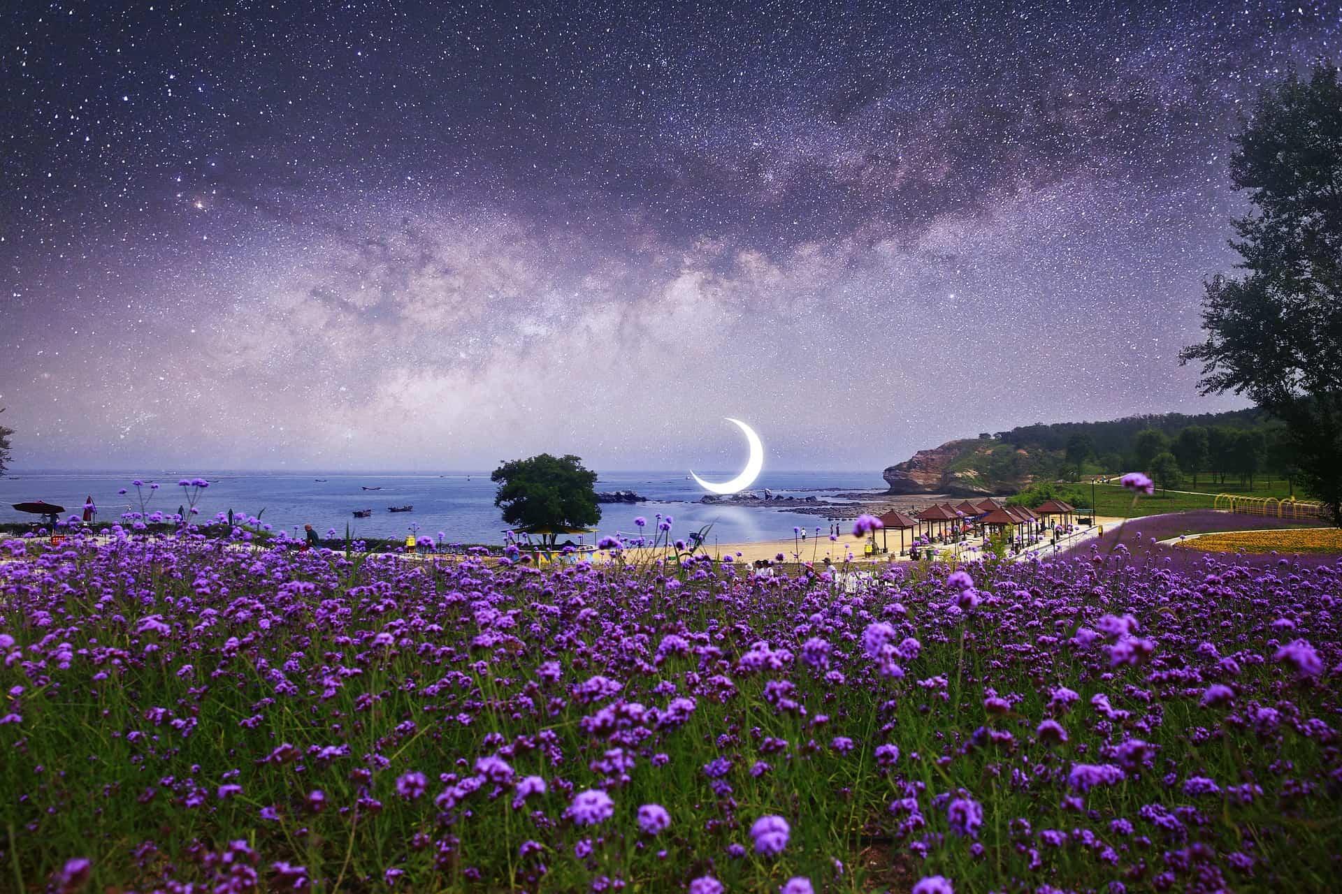 September 28, 2019 -New Moon in Libra