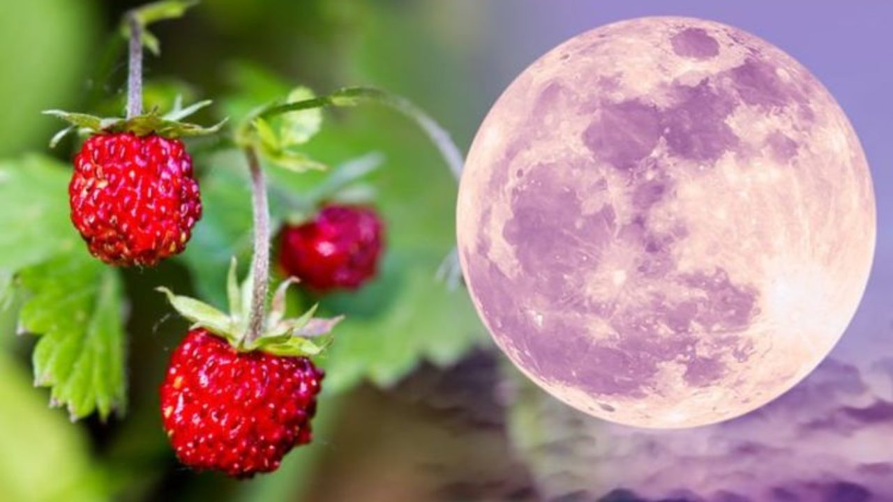 June 5 2020 Full Strawberry Moon