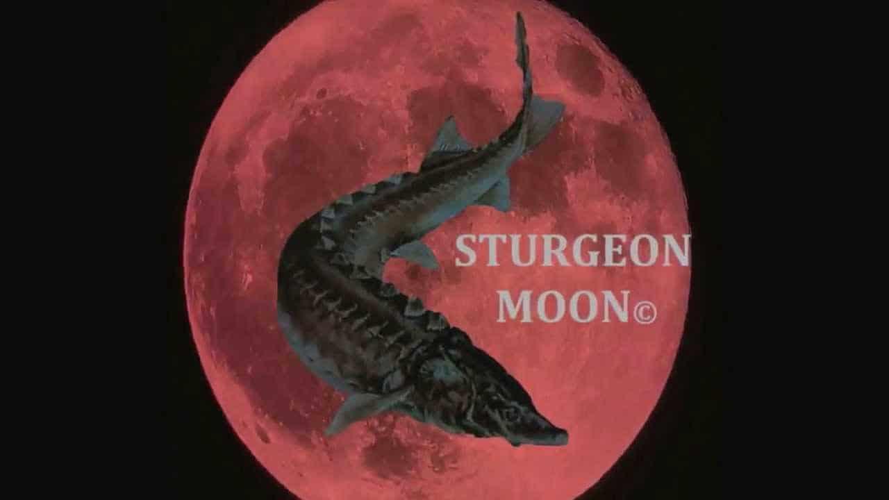 August 3 2020 - Full Sturgeon Moon