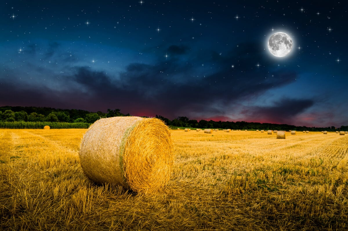 September 2, 2020 Full Moon