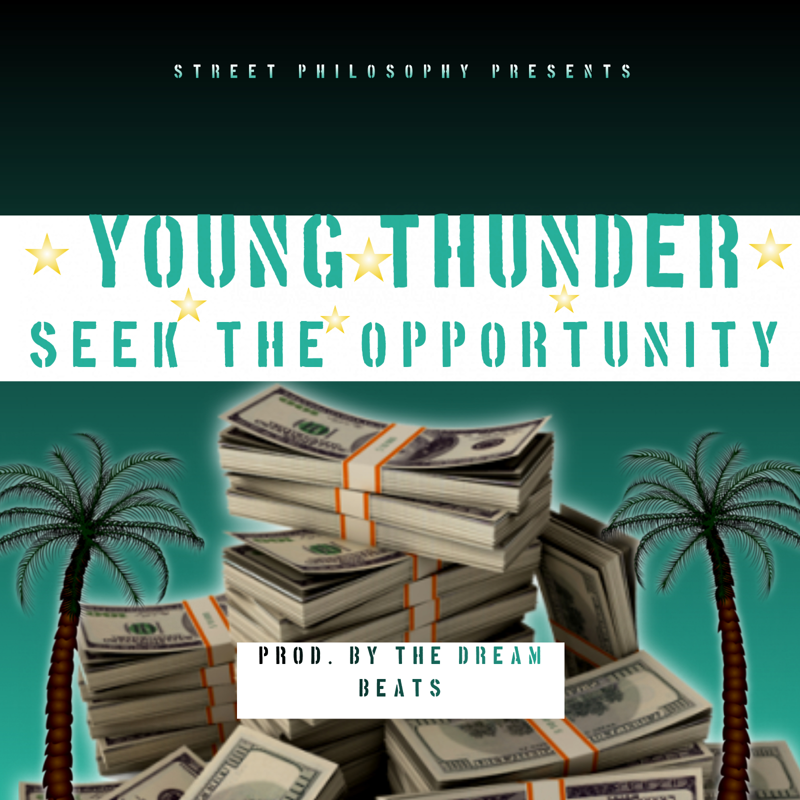 Young Thunder - Seek The Opportunity (Single)