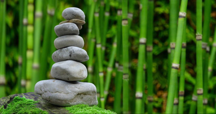 This image of stacked stones in the foreground with bamboo shoots in the background is used to represent ZEN header image on the FREEDOM OF CHOICE page of The Body Is Mind website.