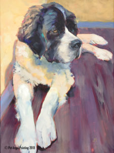 St. Bernard pet portrait