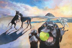 Dog Play Morro Bay
