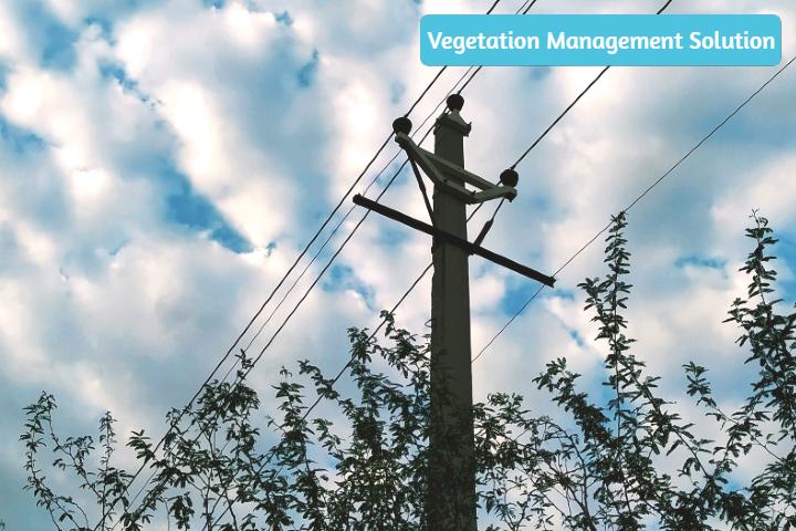 Powercor Vegetation Management Xugo