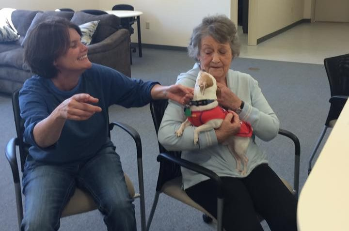 ChristyCare Pet Therapy2