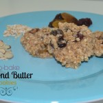no bake almond butter cookies