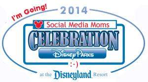 #DisneySMMoms, #DisneySMMoms2014, #StarWars