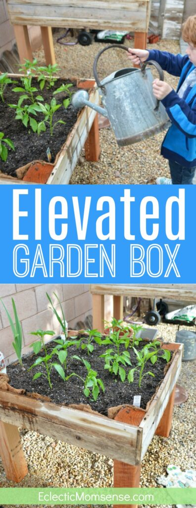 Elevated Garden Box