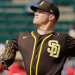 A look at how the Padres' top 30 prospects fared in Spring Training