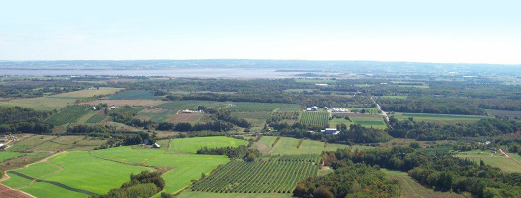 The view from the Annapolis Valley Look-Off