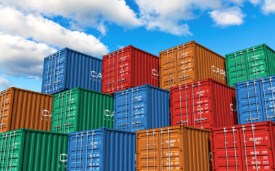 How a 3PL Can Help You Manage Your International Shipping Transportation Needs