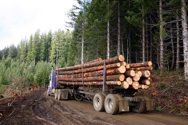 logging-truck-cm