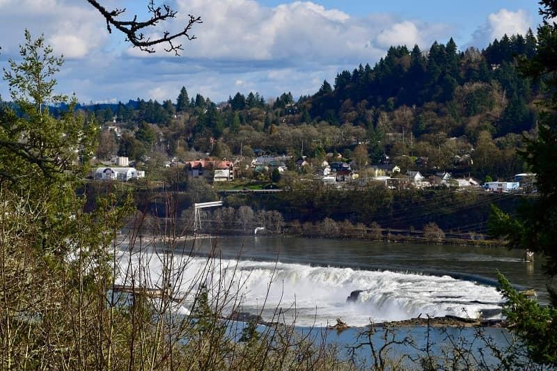 Willamette Falls WL2-cm