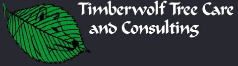 Timberwolf Tree Care Inc
