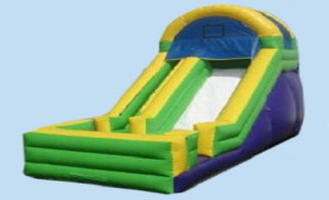 Long Island Bounce House, Party Rental, Inflatable Slide, Kids Party, Children's Party Rental