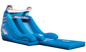 Long Island Inflatable Bounce House and Party Rental, Long Island Water Slide, Kids Party, Children's Party Rental