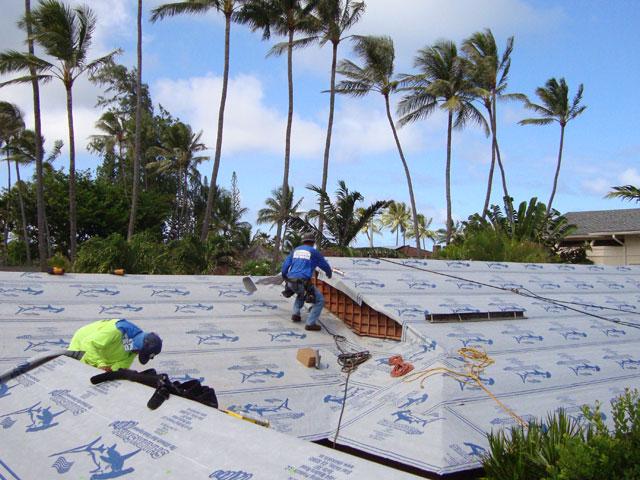 Oahu Sharkskin Ultra Metal