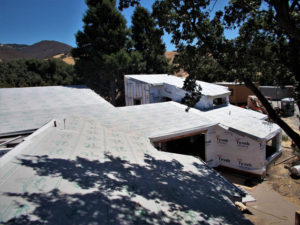 Sharkskin Ultra SA Athenial School California