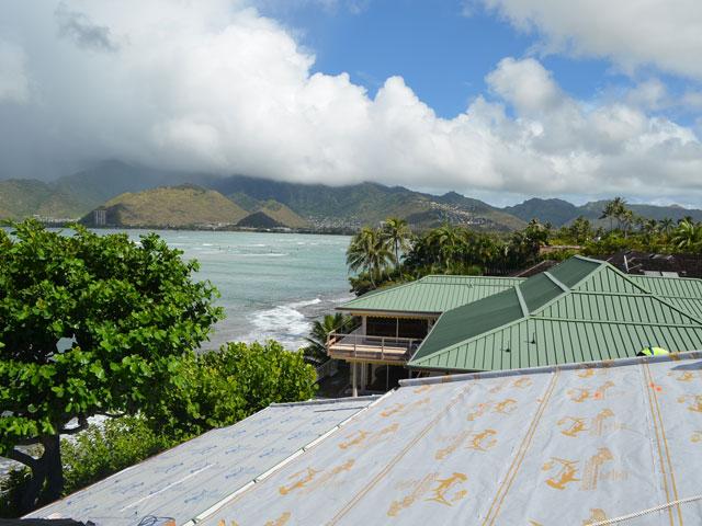 Sharkskin Radiant and Ultra Hawaii