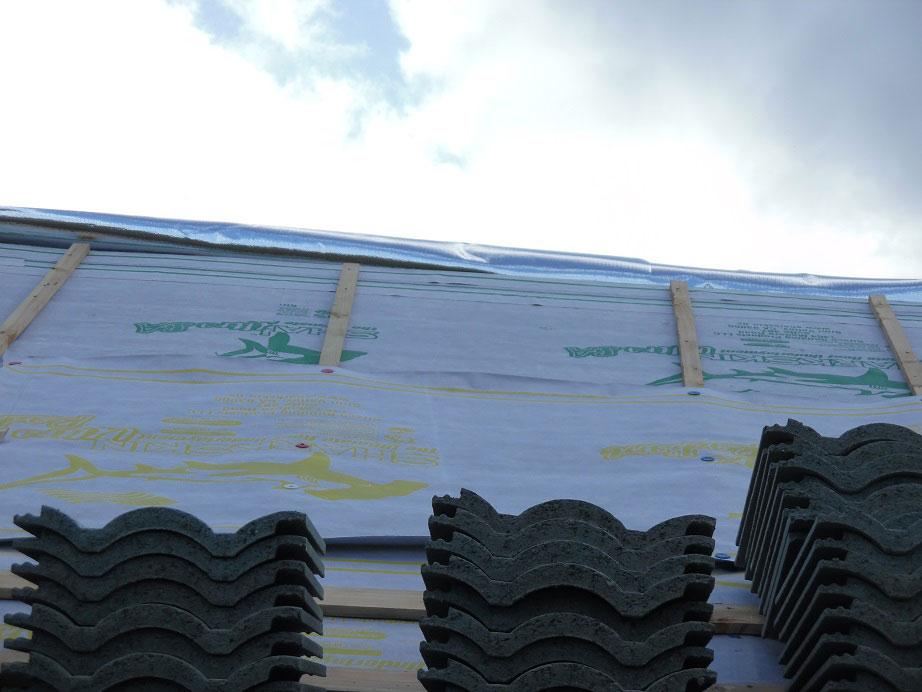 Sharkskin Ultra SA Over Plywood