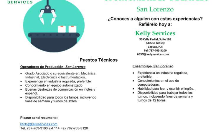 Puestos Tecnicos  Ensamblaje San Lorenzo